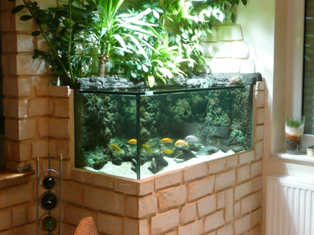 aquarium r ckwand selber bauen so wird s gemacht pictures. Black Bedroom Furniture Sets. Home Design Ideas