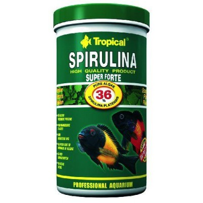 Tropical Spirulina 36% 21L